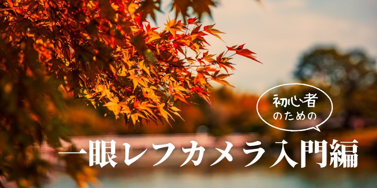 紅葉もきれいに撮れる! 一眼レフカメラ初心者のための入門編