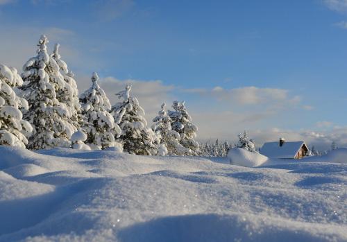 使用可能な気温に注意(一面の雪景色)