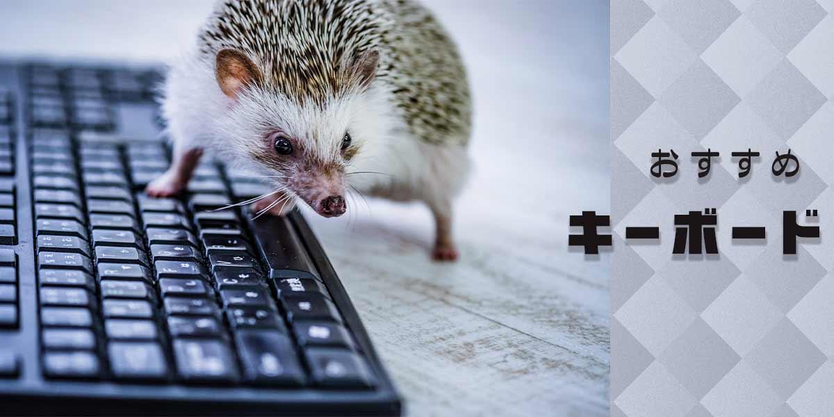 ハリネズミとキーボード