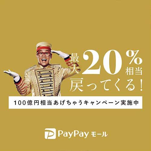 PayPayモールで100億円相当あげちゃうキャンペーン(+9%)