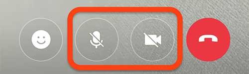 画面下部のマイクとビデオのミュートアイコンを選択