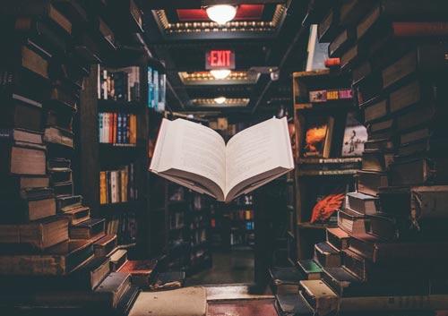 たくさんの本の写真