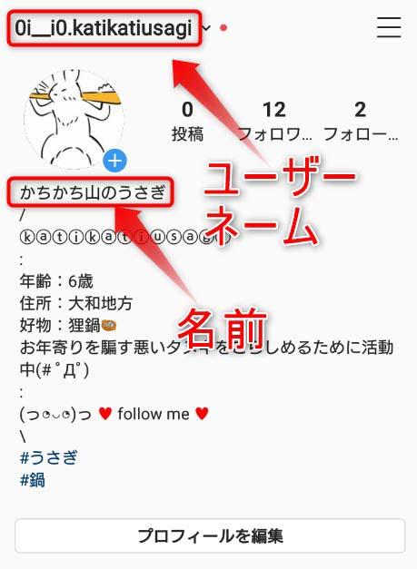 インスタグラムのユーザー名と名前の説明画像