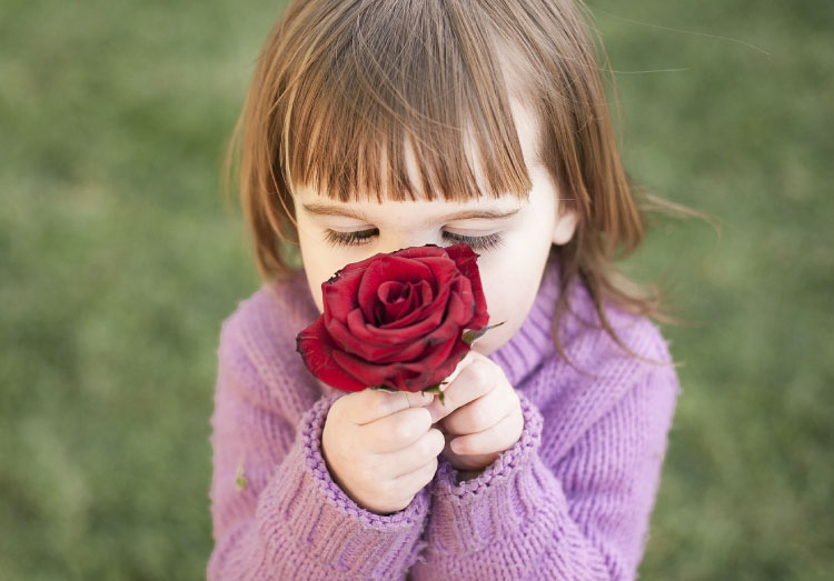バラの香りを嗅ぐ少女