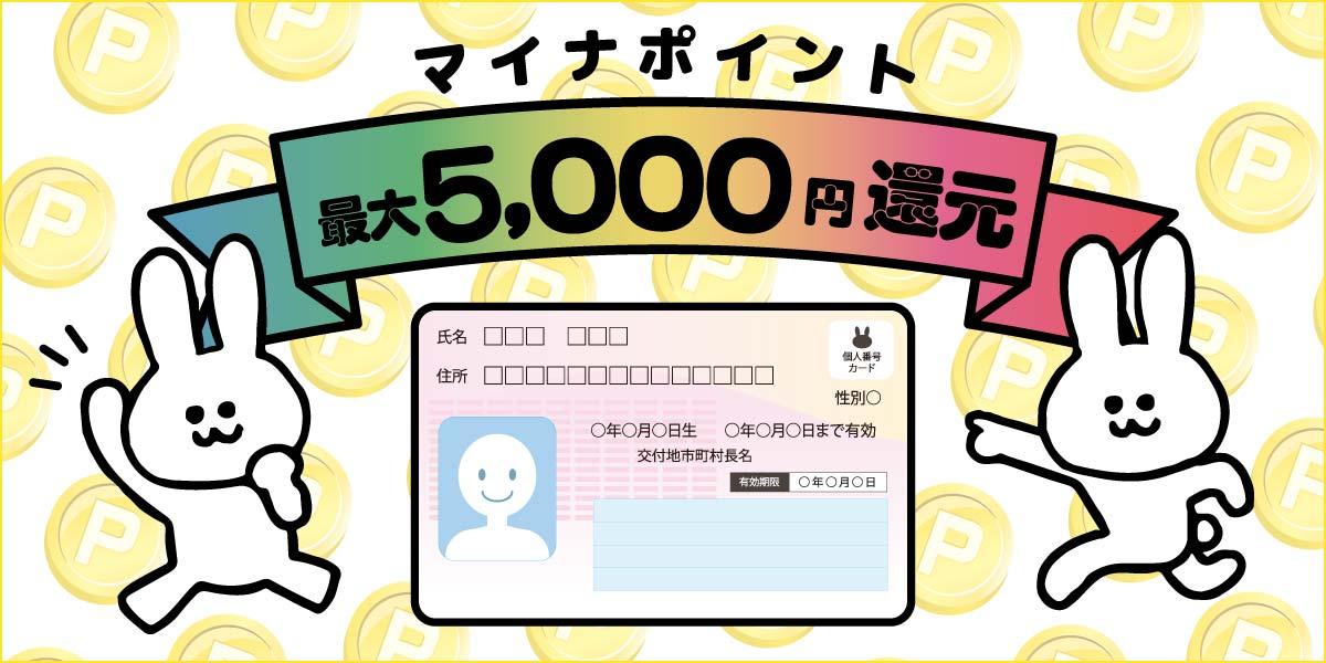 マイナポイント 最大5000円還元