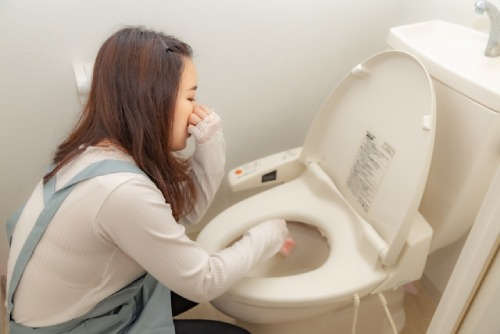 トイレ掃除の画像