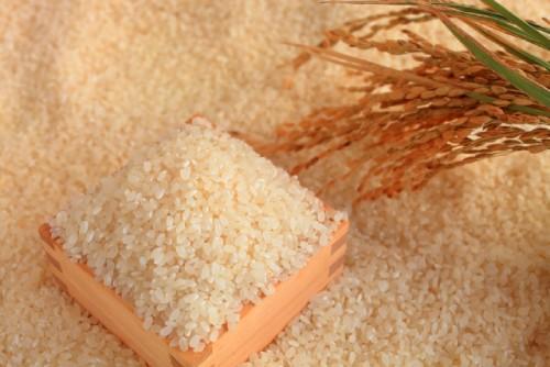 お米を盛り付けた升
