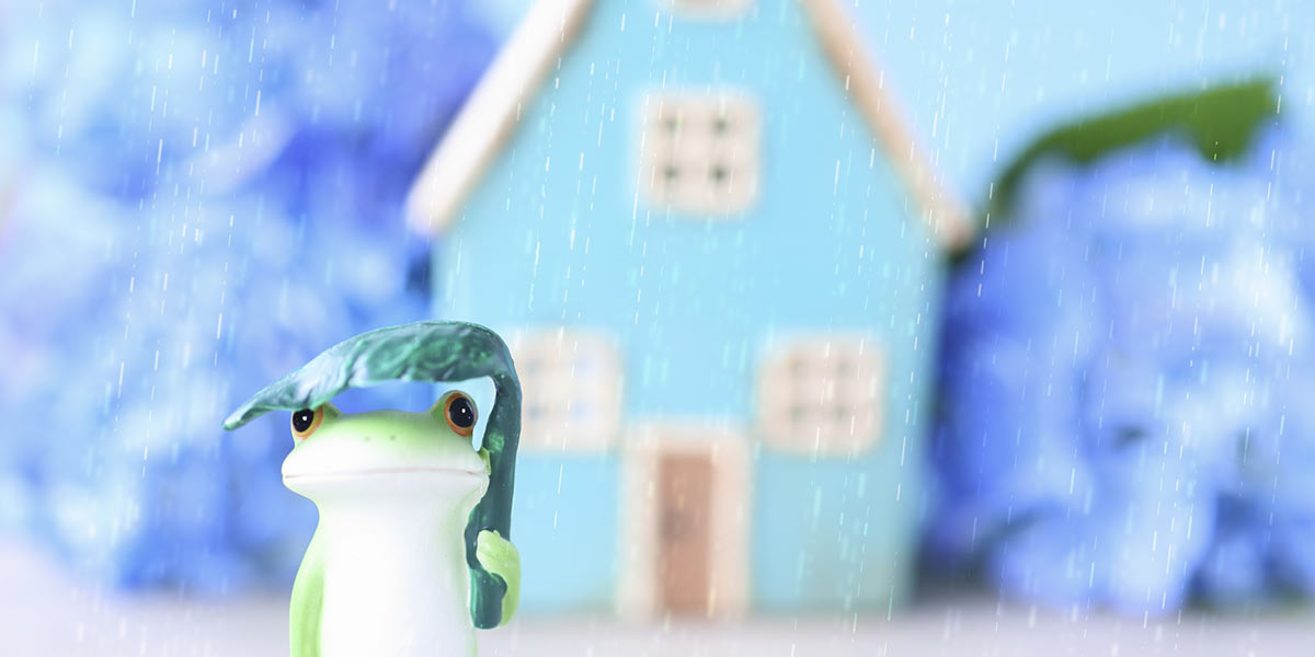 梅雨のイメージ