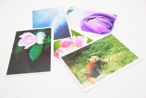 写真印刷を得意としているイメージ