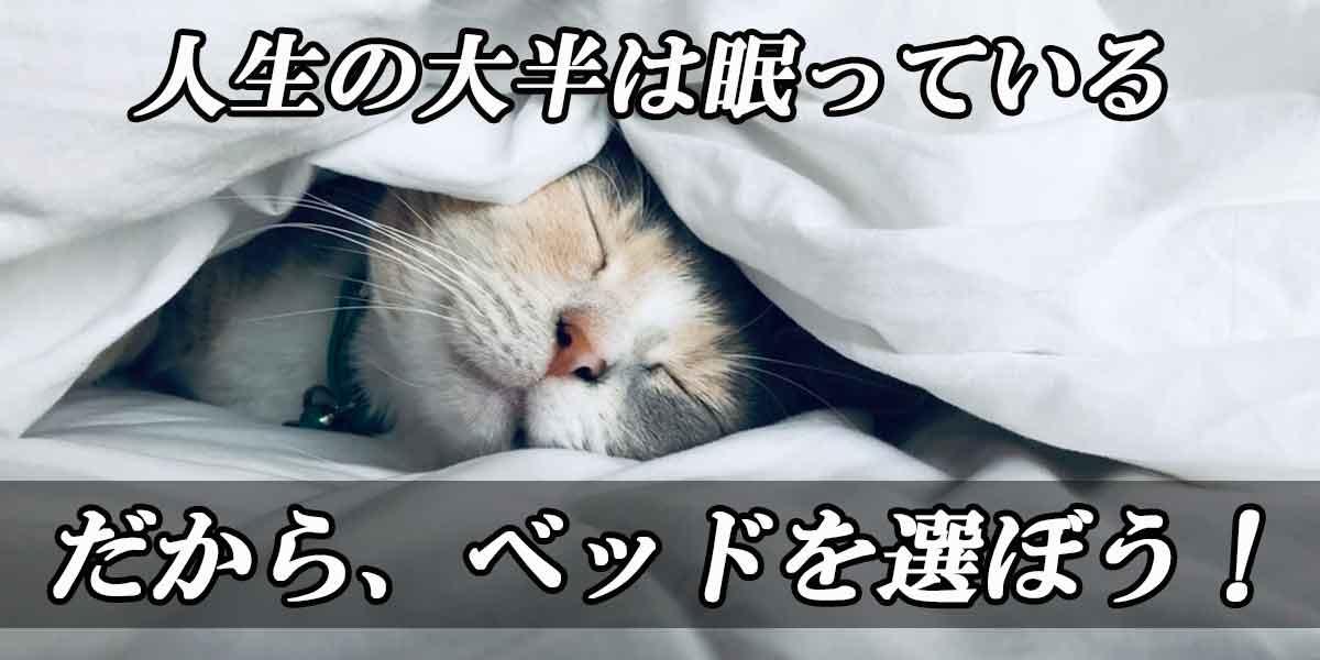 ベッドのイメージ画像