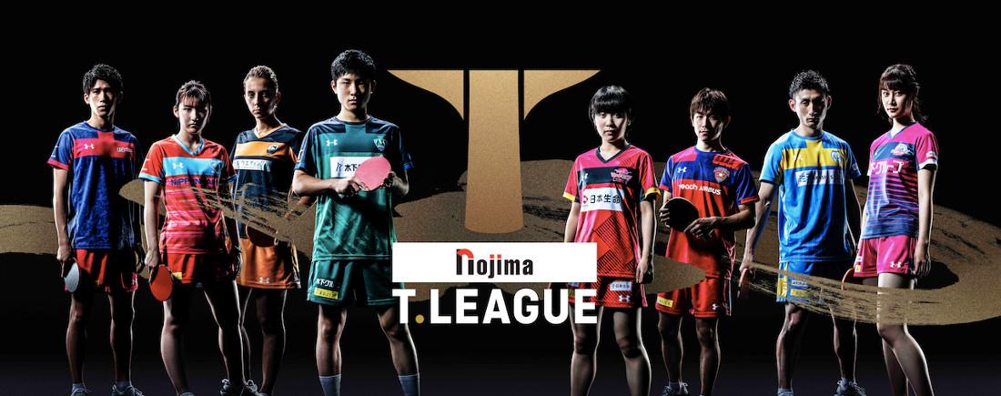 ノジマTリーグの選手が並んでいる写真のTOP画